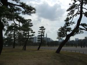 Puistoa