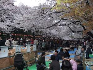 Uenon puisto