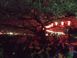 Hanami Uenon puistossa